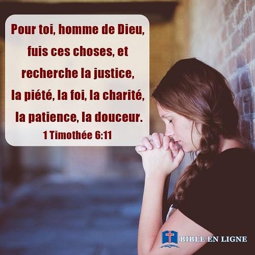 Pour toi, homme de Dieu, fuis ces choses, et recherche la justice, la piété, la foi, la charité, la patience, la douceur. (1 Timothée 6:11)
