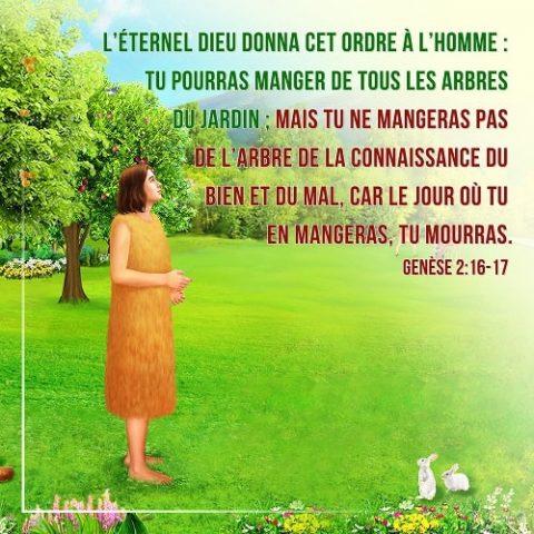 05 Mars 2018 – Genèse 2:16-17