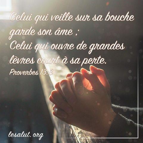 Proverbes 13:3 Celui qui veille sur sa bouche garde son âme ; Celui qui ouvre de grandes lèvres court à sa perte.