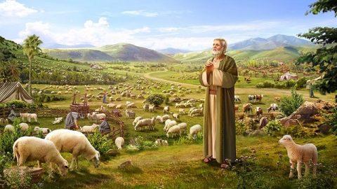 Dieu bénit Job – L'histoires de la Bible