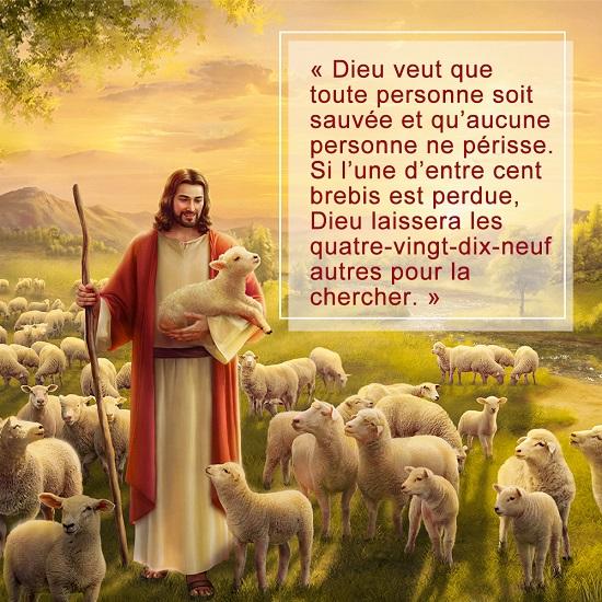 Dieu veut que toute personne soit sauvée et qu'aucune personne ne périsse. Si l'une d'entre cent brebis est perdue, Dieu laissera les quatre-vingt-dix-neuf autres pour la chercher.