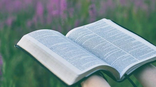 Les fruits de la lecture de la Bible
