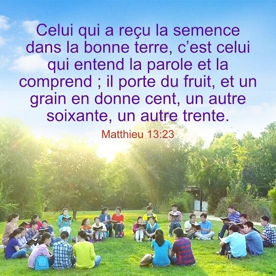 versets bibliques en images – Matthieu 13:23