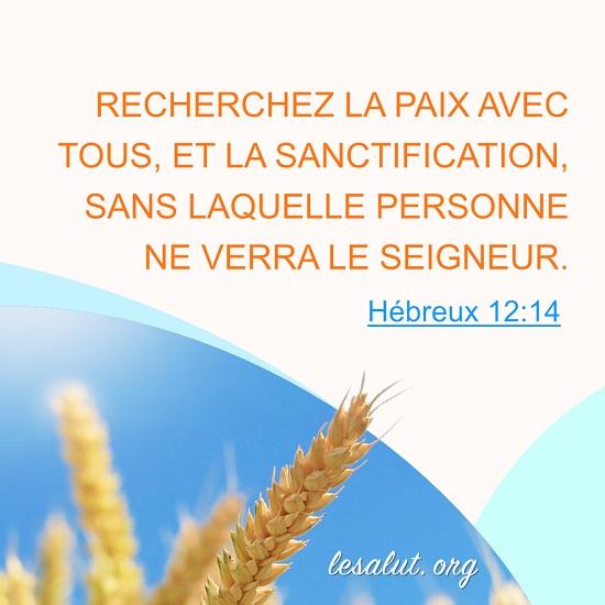 Hébreux 12:14 – Recherchez la sanctification