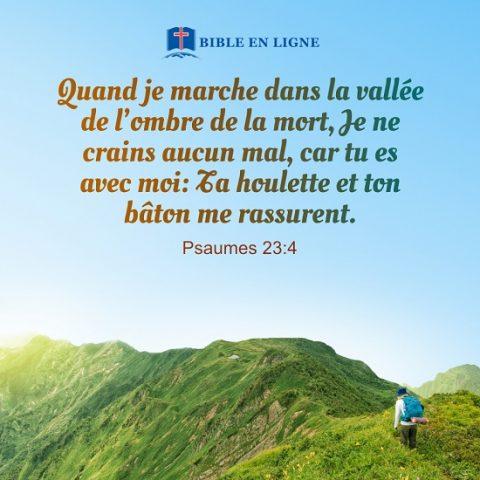 Psaumes 23:4 – Ta houlette et ton bâton me rassurent