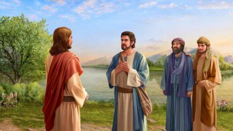 Mais aussi, de tous les apôtres qui suivaient le Seigneur Jésus-Christ, en dehors de Pierre, qui a été éclairé par le Saint-Esprit du fait que le Seigneur Jésus était le Christ