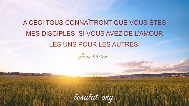 8 Versets Bibliques Sur Lamour Bible En Ligne Le Salut