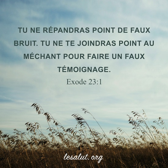 Évangile du jour – Ne pas répandre de fausses rumeurs