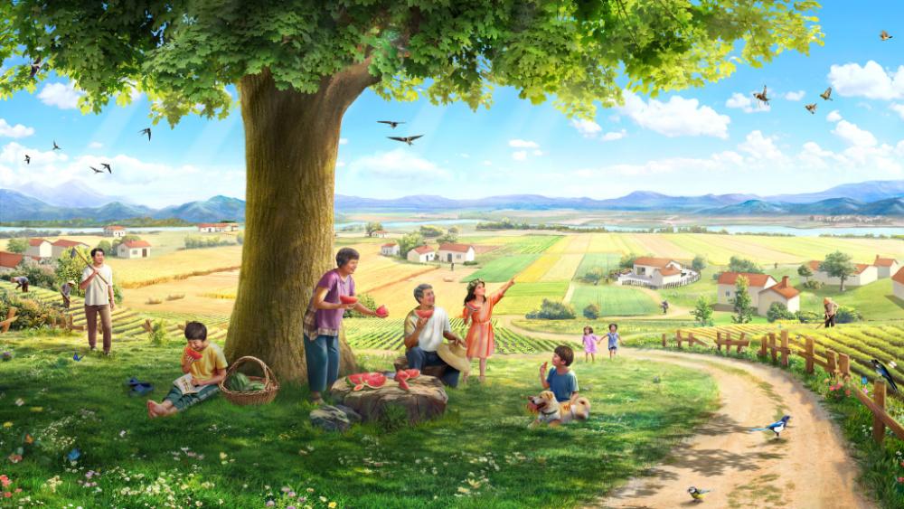 Histoire. Une graine, la terre, un arbre, le soleil, les oiseaux chanteurs et l'homme