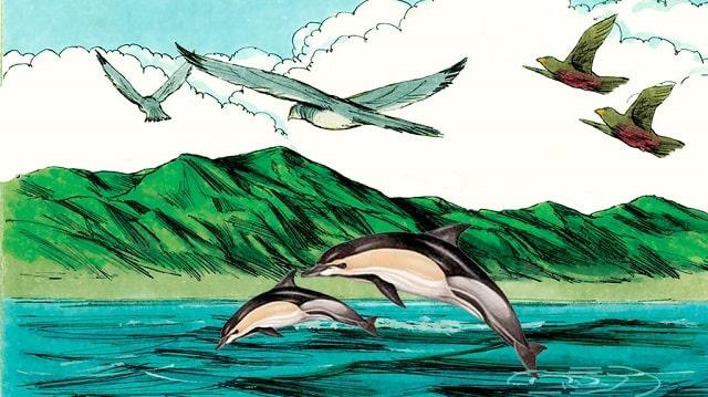 Dieu dit: Que les eaux produisent en abondance des animaux vivants, et que des oiseaux volent sur la terre vers l'étendue du ciel.