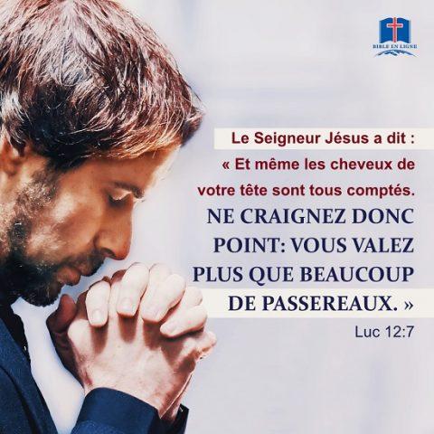 Luc 12:7 Et même les cheveux de votre tête sont tous comptés. Ne craignez donc point: vous valez plus que beaucoup de passereaux.