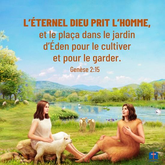 Évangile du jour - Voir l'amour de Dieu à travers la vie dans le jardin d'Éden