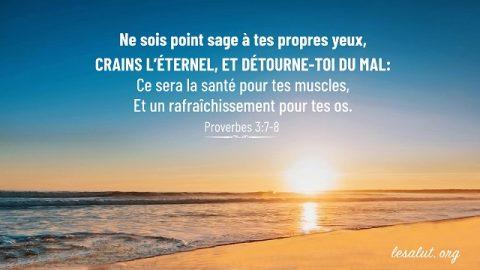 20 Versets Bibliques Sur Le Mariage Bible En Ligne Le