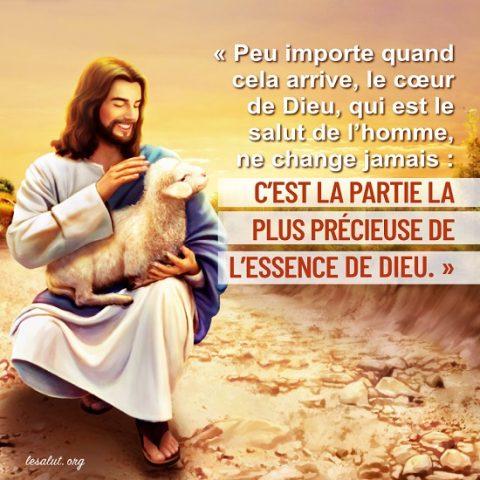 Le cœur de Dieu, qui languit du salut de l'homme, ne changera jamais