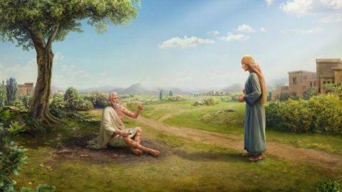 « Mais Job lui répondit: Tu parles comme une femme insensée. Quoi ! nous recevons de Dieu le bien, et nous ne recevrions pas aussi le mal ! » (Job 2:10)