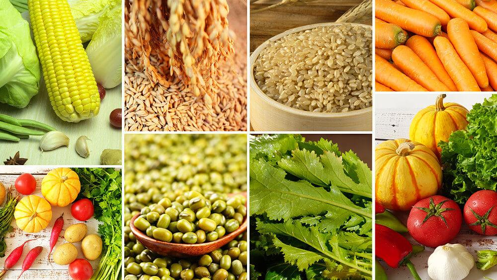 Tous types d'aliments végétariens que Dieu prépare pour l'humanité