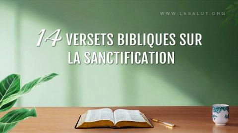 14 Verstes Bibliques sur la Sainteté