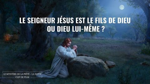 Le Seigneur Jésus est le Fils de Dieu ou Dieu Lui-même ?